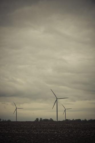 113/365   wind farm