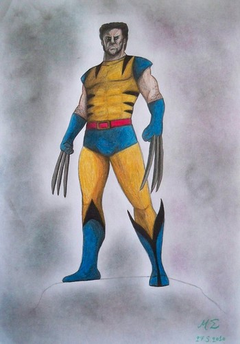 Wolverine pencil drawing (7)