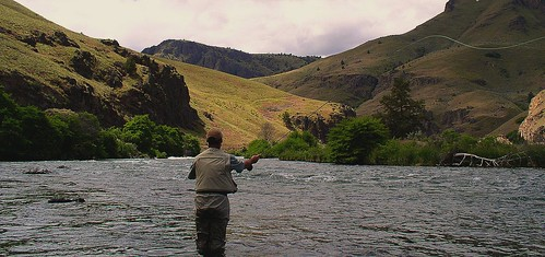 Working a riffle on the Deschutes, cropped
