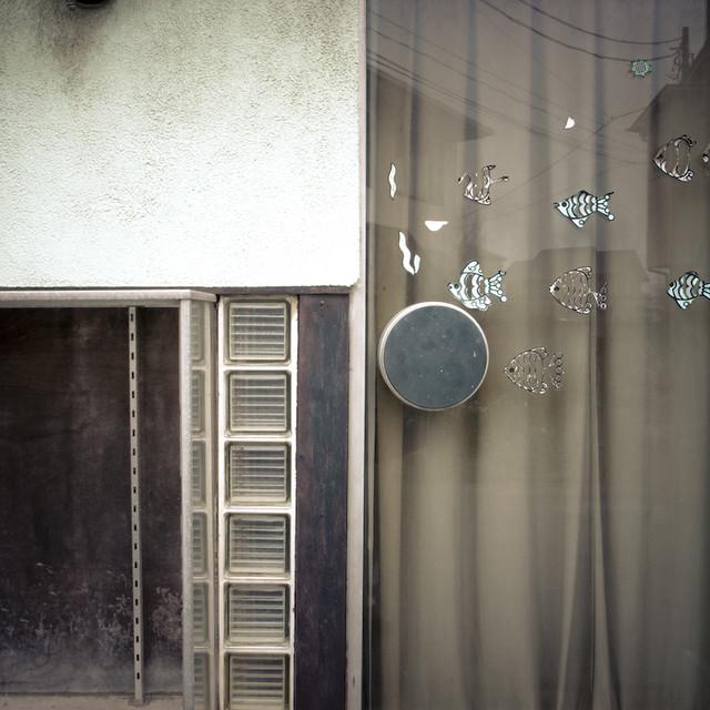 Fish Door Knob Window