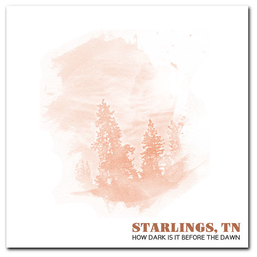 Digital Album Artwork for Starlings TN