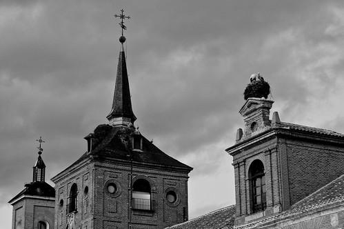 Torres, agujas, nidos y tejados