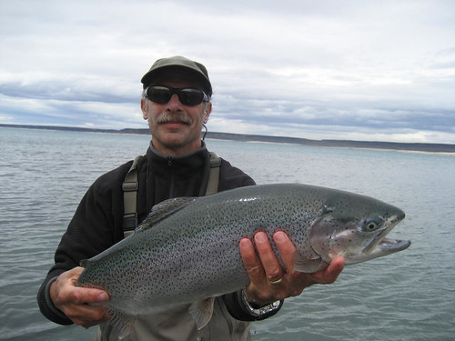 Argentina Rainbow Trout