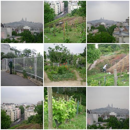 2010-05-284