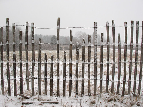 Snowy Snow Fencing
