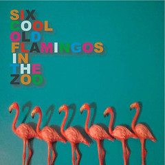 SIX OLD FLAMINGOS IN THE ZOO<br/>CD / 10曲入 / ¥1,000<br/>Flamingo Records<br/><br/>01. S.C.O.F.I.T.Z.<br/>02. TTT<br/>03. The end of the movie<br/>04. Novorak<br/>05. Beef versus Pork<br/>06. 45 aliens<br/>07. All our first lovers<br/>08. ジェットコースター<br/>09.