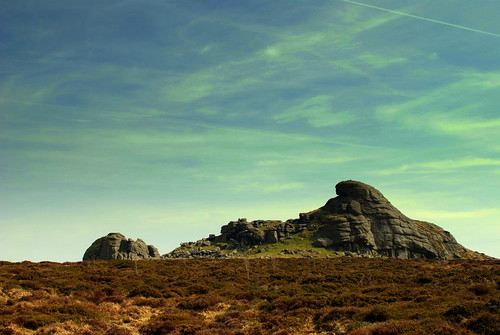 Dartmoor April 210