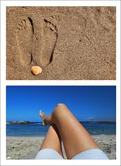 10/365 Verano (Summer)