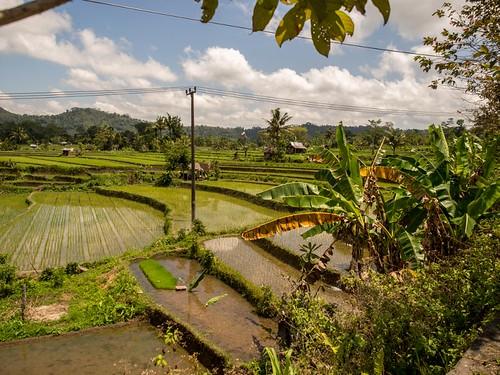 Bali - Sidemen