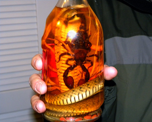 20091231 - New Year's Eve Chili Cook-Off - 0 - snake wine - DSCN0241 - (by Eli)