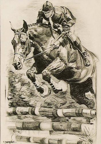 Cheval sautant un obstacle
