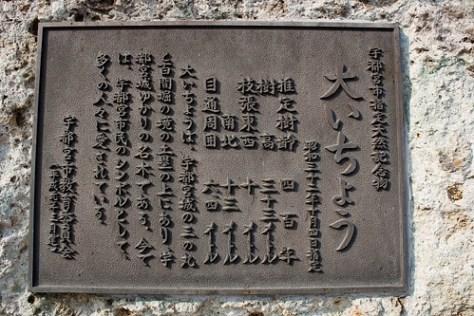#2 Grand Ginkgo of Asahimachi (by Mullenkedheim)