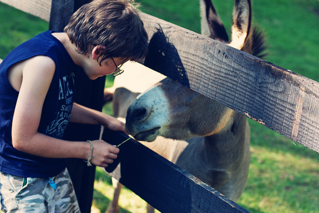 caleb with donkey