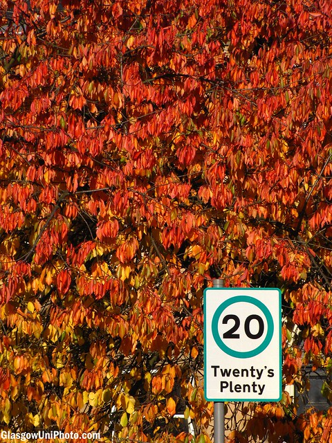 Twenty's Plenty in the Autumn