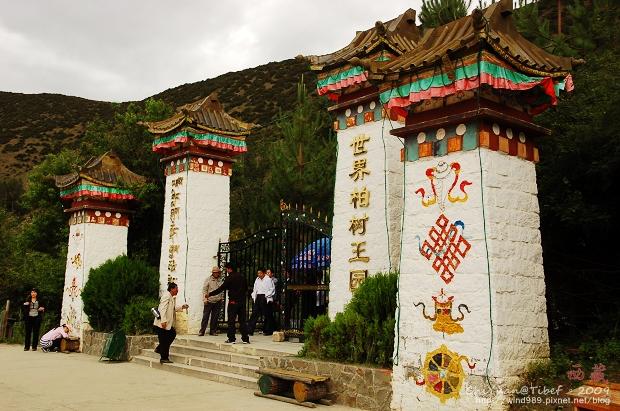 西藏林芝世界柏樹王園林01.jpg