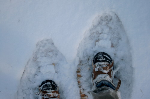 Snowshoes in snow