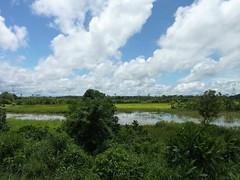 Santa Cruz - La Amazonia