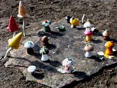 Mushroom Galore