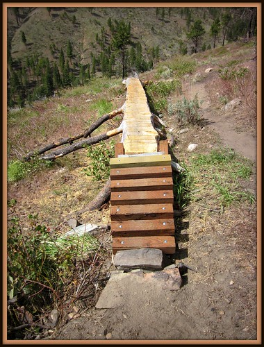 Log Skinny Entrance