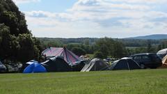 Meadowlands festival