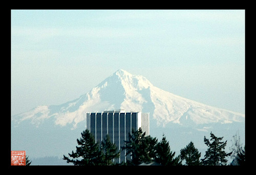 Mount Hood on our drive today..Xmas Eve 2009