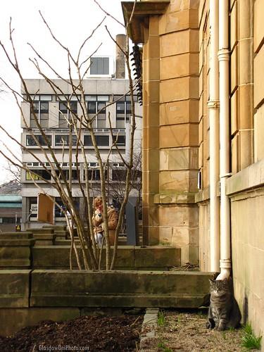 Miller on University Gardens