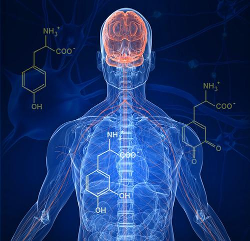 Sntomas y tratamientos en la enfermedad de Parkinson