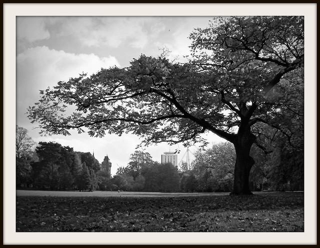 Cardiff Castle in Autumn