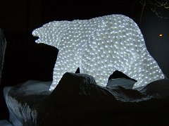 2010 VANCOUVER WINTER OLYMPIC GAMES | POLAR BEAR 2