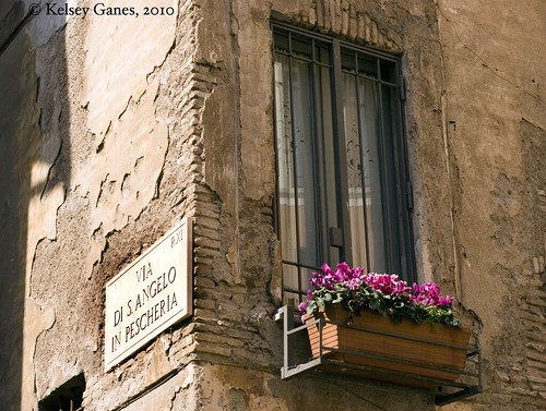 Sant'Angelo Window Box
