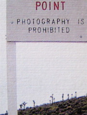 Percival Everett, Deserto americano, Nutrimenti 2009; art director: Ada Carpi; risvolto di cop. [responsabilità non indicate] (part.), 2