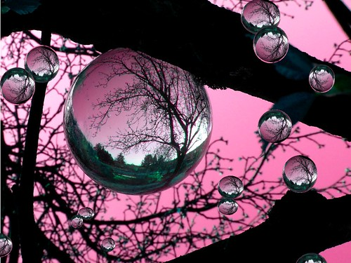 the tree with the pink balls