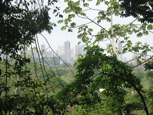 Parque Natural Metropolitano Amenazado, Natural Park Threatened