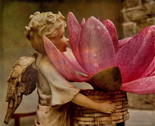 small angel carrying an enormous flower in a basket