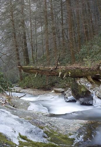 Dukes Falls Trail,GA