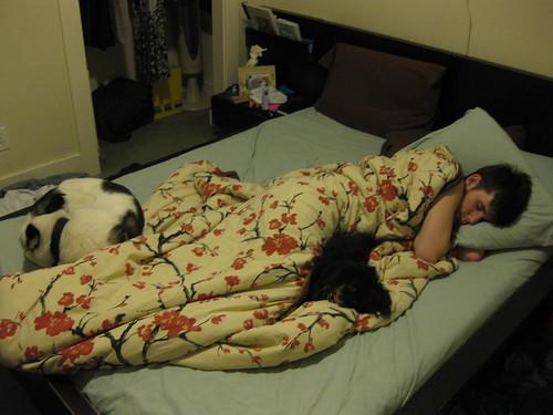 Sleepies Time Gang