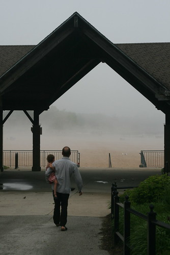 misty morning at foster avenue beach