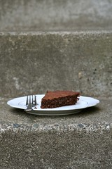Double Chocolate Macaroon Cake