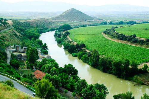 Ebro por el cortijo