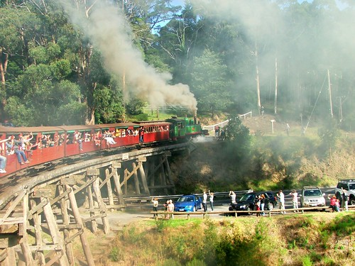 Puffing Billy Trestle Bridge