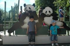 Österreich: Tierpark Schönbrunn