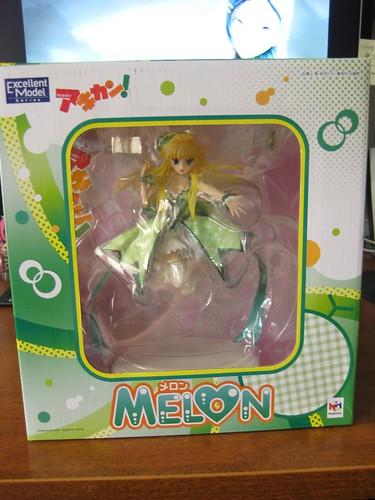 Melon_1