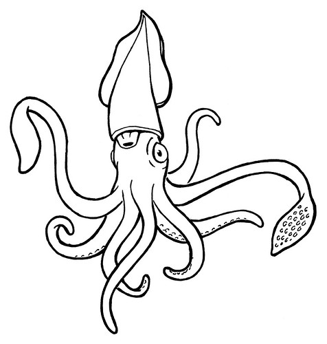 Image result for squid line drawing