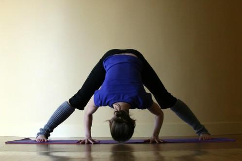 8limbs of yoga  kelly sunrose yoga