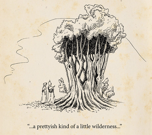 Illustration Friday: Wilderness