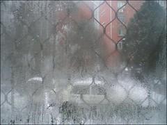 Beijing - fogged window
