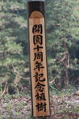 新治市民の森(At Niiharu civic forest, Japan)