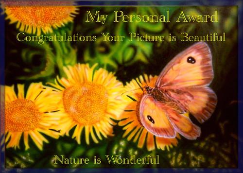 04 award airbrush artbyal