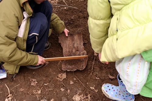 Examining the Dirt