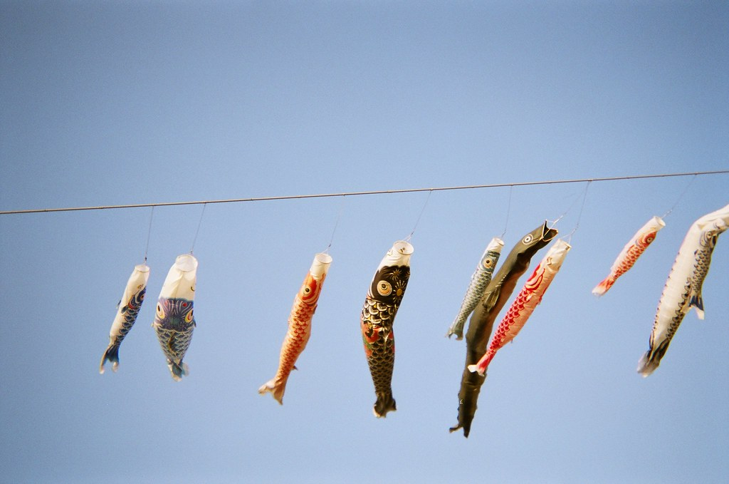 Koinobori, a symbol for the arrival of spring
